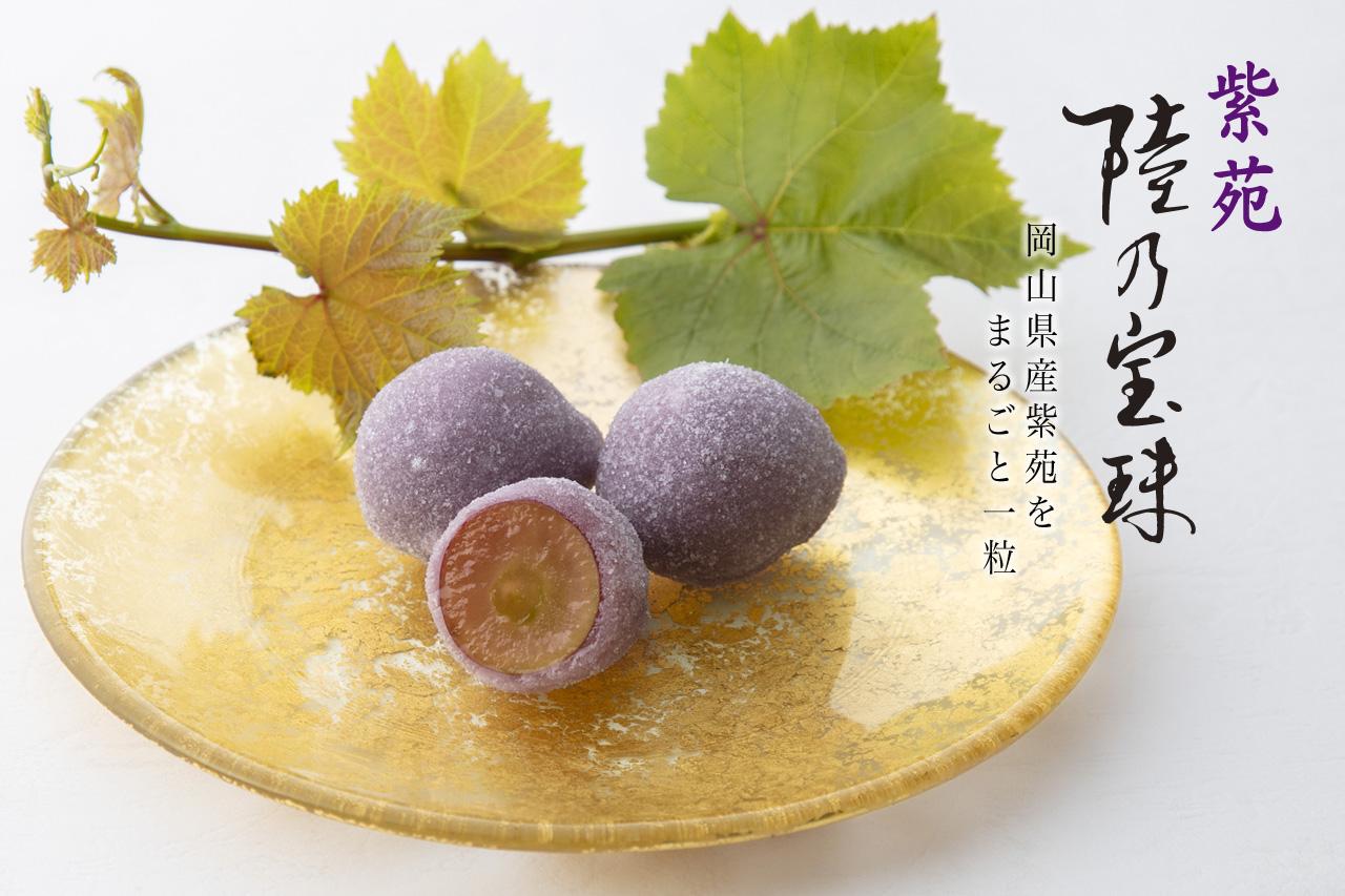 陸乃宝珠 紫苑